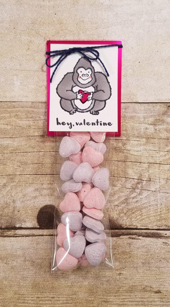 Valentine Treat Bag Idea