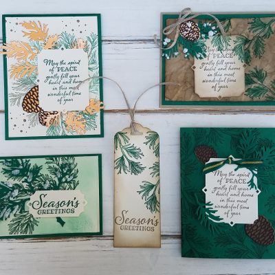 Peaceful Boughs Stamp Set and Card Ideas