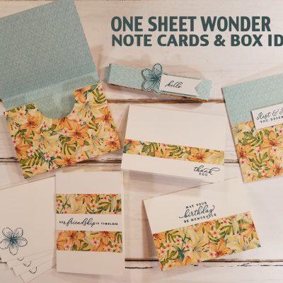 One Sheet Wonder Note Cards & Box Idea